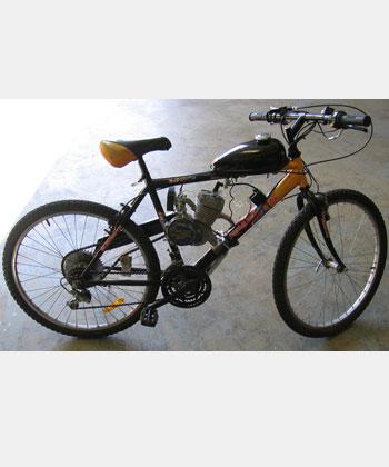GT 80 Mountain Bike